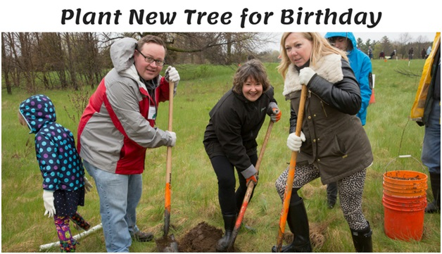 Plant New Tree for Birthday